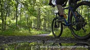 Sturz im Tränkbergholz: Mountainbiker verletzt sich schwer - Augsburger Allgemeine