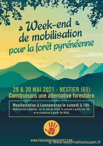 Hautes-Pyrénées : mobilisation contre un projet de scierie à Lannemezan - Le Journal Toulousain