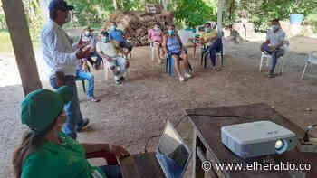 Caso de rabia silvestre alerta a zona rural de Sincelejo - EL HERALDO