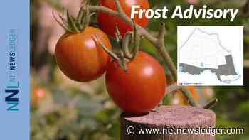 Frost Alert For Western Ontario including Thunder Bay, Dryden, Kenora, Sioux Lookout - Net Newsledger