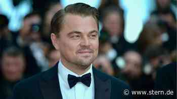 Organisation um Leonardo DiCaprio stellt 43 Millionen Dollar für Galápagos-Inseln bereit - STERN.de