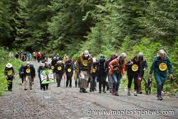 Seniors overwhelm RCMP barrier past Fairy Creek blockade – Maple Ridge News - Maple Ridge News