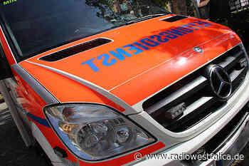 Kutschenunfall in Porta Westfalica: 33-jährige Frau wird leicht verletzt - Radio Westfalica