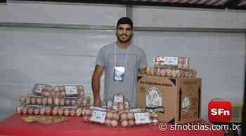 Com aumento do preço da carne, granja em Bom Jesus do Itabapoana passa a produzir 4 mil ovos por dia - SF Notícias