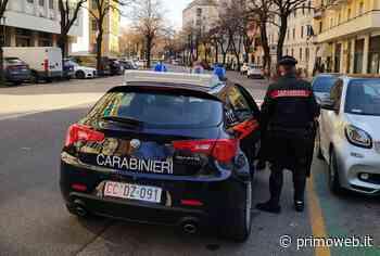 Isola della Scala, identificati due minorenni coinvolti nella baby gang che a gennaio terrorizzò Verona - PrimoWeb