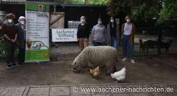 Willi-Fährmann-Schule Eschweiler: Tierprojekt vor dem Aus retten - Aachener Nachrichten
