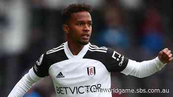 Rising Aussie Francois plans to help spearhead Fulham's Premier League return - The World Game