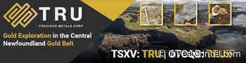 TRU Precious Metals Advances Phase One Exploration Program at Gander West Property - InvestorIntel