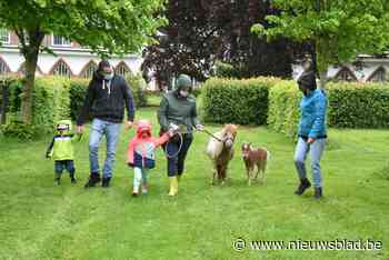 Regen houdt gezinnen niet weg van eerste Parkenparade - Het Nieuwsblad