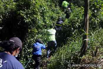 Nueva búsqueda de la joven Juliana Campoverde La joven desapareció en 2012. Responsable fue declarado un - expreso.ec