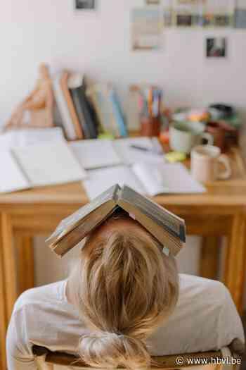 Op zoek naar een leuke studeerplek? - Het Belang van Limburg