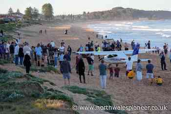 Plane lands safely on Sydney beach after engine fails - North Wales Pioneer