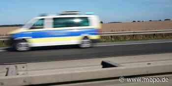 Spinne im Auto: Fahrerin im Norden kracht in Leitplanke - Hamburger Morgenpost
