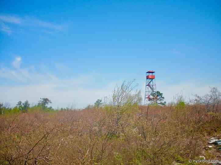 Wurtsboro Ridge State Forest Hike