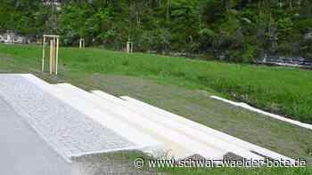 Jahrelanger Prozess - Gestaltung der Eyachauen in Haigerloch ist nahezu abgeschlossen - Schwarzwälder Bote