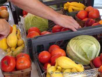 Maynooth Farmers Market set for Saturday opening - mybancroftnow.com