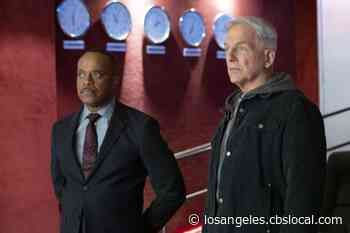 Rocky Carroll On 'NCIS': 'Having A Prior Relationship With Mark Harmon Was A Huge Help' - CBS Los Angeles