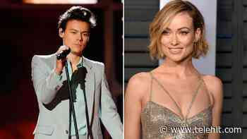 Olivia Wilde pide orden de restricción contra acosador que busca 'competir' con Harry Styles - Telehit