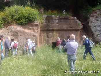Passeggiata tra i siti archeologici tra Villa San Giovanni in Tuscia e Blera | - NewTuscia