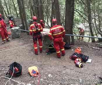 Dog dies in fall at Elora Gorge on weekend - Wellington Advertiser