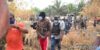 Police repel attack on Katsina community, kill 4 bandits - Pulse Nigeria