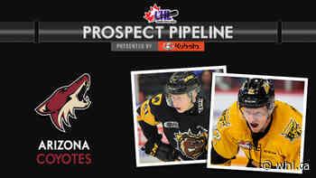 CHL Prospect Pipeline – Arizona Coyotes – WHL Network - Western Hockey League
