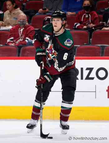 Arizona Coyotes Face Several Challenges During Summer Preparation - Howlin' Hockey