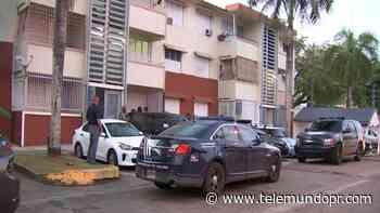 Arrestan a varios adultos y menores durante allanamientos en residencial Vista Hermosa - Telemundo Puerto Rico