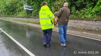 Werdohl: Es rannte über die B229: Reh aus Dornenbusch gerettet - BILD