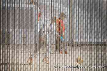 CPB releases video of children processing center, where no media has been allowed