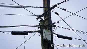 Marck: plusieurs quartiers privés d'électricité... à cause de cigognes - La Voix du Nord