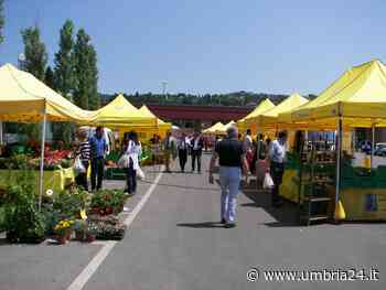 Il sabato a Todi e il Martedì a Gualdo Tadino, arrivano i mercati del contadino - Umbria 24 News