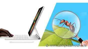 Makro-Aufnahmen: iPad Pro 2021 hat eine versteckte Mikroskop-Funktion