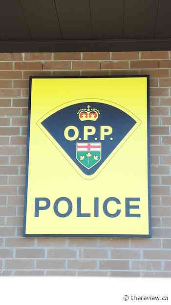 Russell OPP looking for information on Embrun recreational facility arson - The Review Newspaper