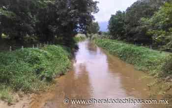 Piden desazolves en canales de la zona cañera en Huixtla - El Heraldo de Chiapas