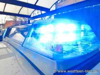 Autofahrer flüchtet vor der Polizei von Bad Driburg nach Brakel: Ohne Führerschein, aber mit Drogen - Westfalen-Blatt