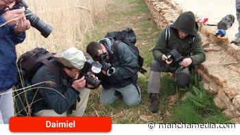 El testing fotográfico de biodiversidad en Las Tablas de Daimiel llega a su décima edición - Mancha Media