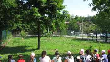 Guastalla, estate in oratorio per i ragazzi: tornano il Grest e il Summer Camp - La Gazzetta di Reggio