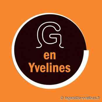 Les vitrines des commerçants se transforment en une exposition - La Gazette en Yvelines