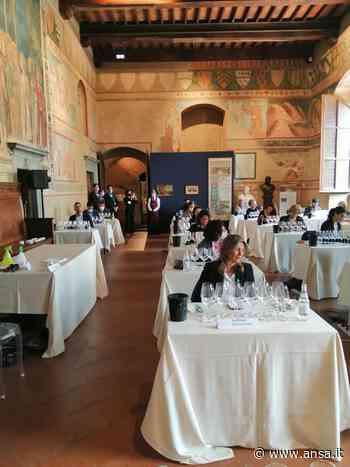 Vino: Vernaccia San Gimignano, +13% primi quattro mesi 2021 - Agenzia ANSA