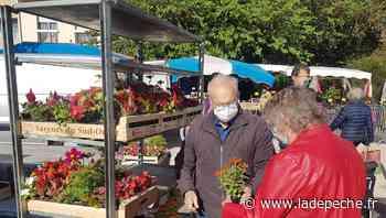Castanet-Tolosan. Le marché de toutes les attentions - ladepeche.fr
