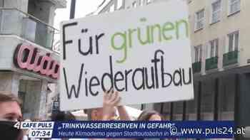 Umweltschützer protestieren gegen Tunnelbau in der Lobau - PULS 24
