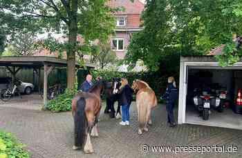 POL-ST: Pferde im Hof der Polizeiwache Emsdetten - Presseportal.de