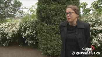Fabulous Saint Joseph's Oratory of Mount Royal | Watch News Videos Online - Globalnews.ca