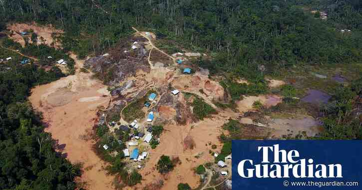 Brazilian wildcat miners attack police and burn indigenous homes in Amazon