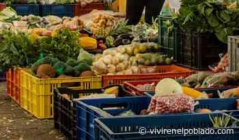 Regresa el Mercatodos al parque principal de Envigado - Vivir en el poblado