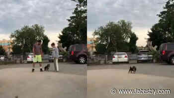 Pet Owners Take Funny 'Run In Opposite Directions' TikTok Challenge to Test their Dogs' Loyalty; - LatestLY