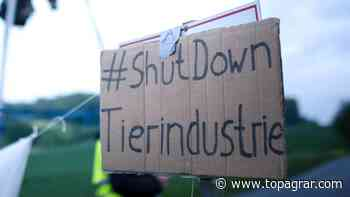 Tierrechtler blockieren Plukon-Schlachtbetrieb in Gudensberg | top agrar online - top agrar online