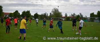 Sport aus der Region SV Seeon/Seebruck zurück auf dem Platz - Traunsteiner Tagblatt