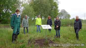 Neue Infoschilder an der Beeke in Schwanewede - WESER-KURIER - WESER-KURIER